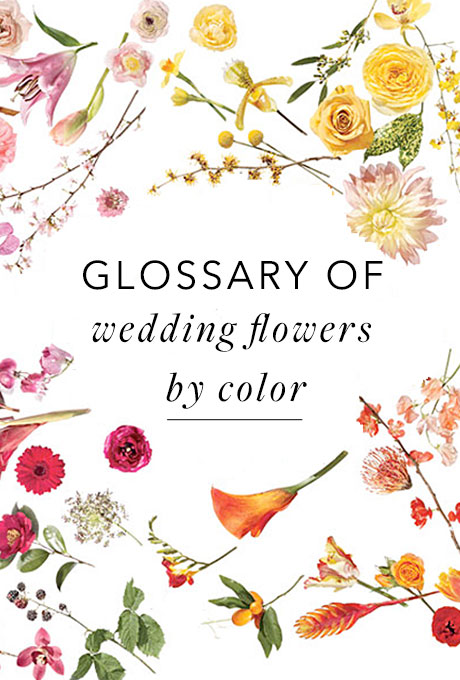 a glossary of wedding flowers by color grand central floral. Black Bedroom Furniture Sets. Home Design Ideas