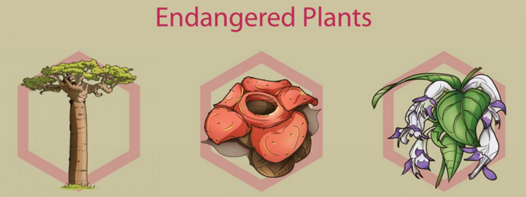 endangered plants Federally listed threatened and endangered species are it listed ginseng as threatened and virginia round-leaf birch as endangered additional plants and.