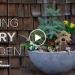 GCF Fairy Garden