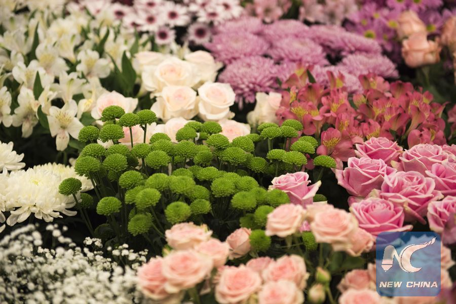 6a13f93cdb79 Kenya s flower industry has tapped into the growing Chinese market in order  to boost earnings of the sector